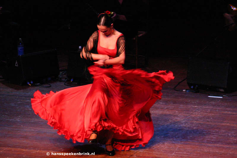 http://www.miwian.nl/images/flamenco.jpg